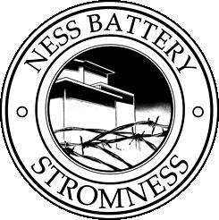 Ness Battery